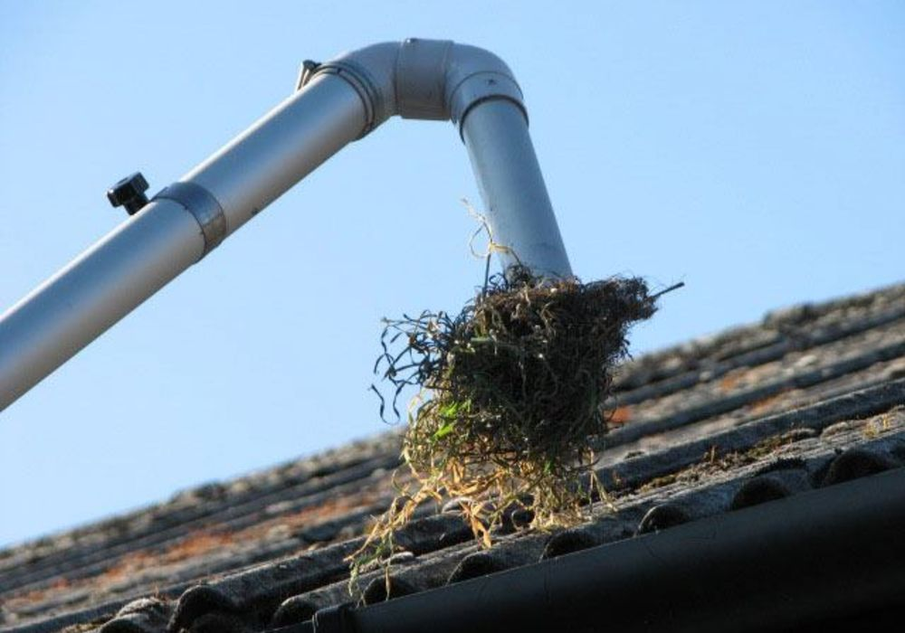 Gutter cleaning company